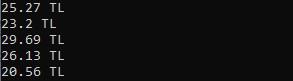 293x81